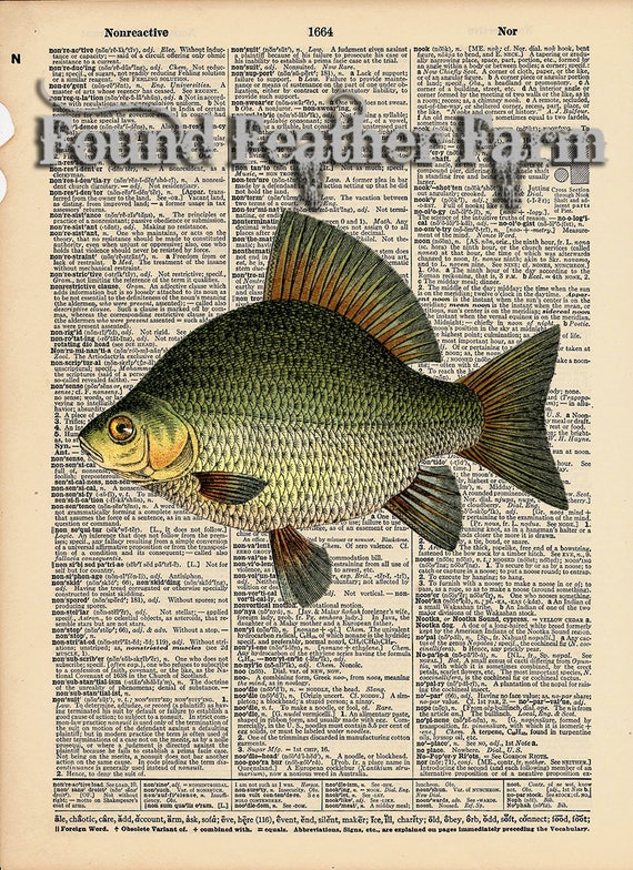 """Vintage Antique Dictionary Page with Antique Print """"Large Fish"""""""