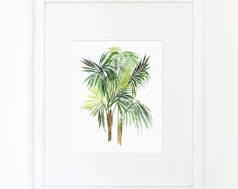 Areca Palm - Watercolor Art Print