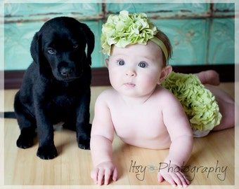 Green Hydrangea Diaper Cover & Headband, Birth Announcement Outfit, Newborn Photo Outfit, Green Hydrangea Bloomer, Baby's 1st Photo Outfit
