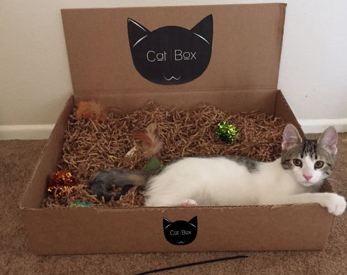 CatBox- A Box Full of Fun For Your Feline Friends!!!