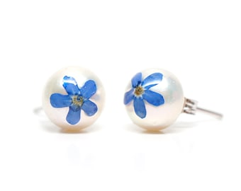 Blue 'Forget-me-not' on 10mm cream pearl stud earrings - real pressed flower