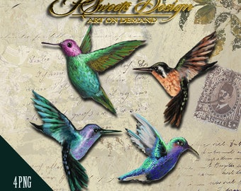 Hummingbird Clipart Collection, Hand Painted Clipart