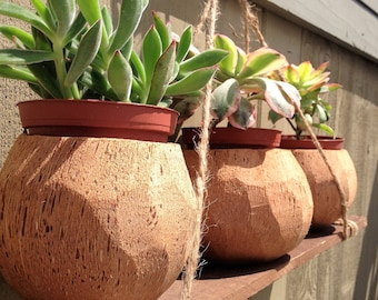 100% Natural HandCarved Coconut Planters /Holders