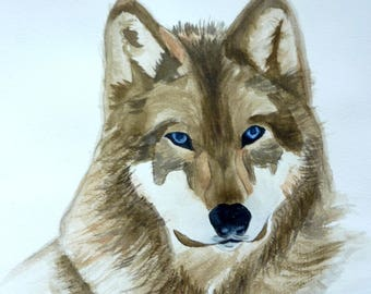 watercolor a beautiful Wolf head