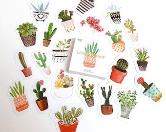 Watercolour Succulent and Cactus Sticker Set
