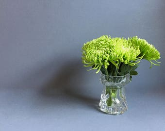 Textured Clear Ingrid Glass Vase