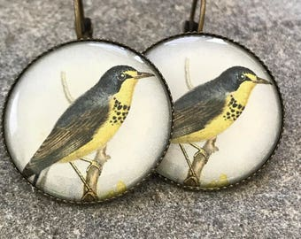 Vintage Fauna, Earrings, Vintage, Fauna, Flora and Fauna, Victorian, Antique Style, Vintage Style, Victorian Fauna, Jewelry, Eclectic, Gift