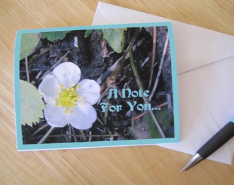 Wild Strawberry A Note For You Card