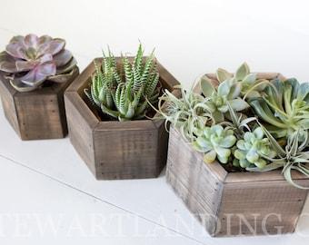 Hexagon Wood Planter Box Set of 3 | Geometric Succulent Hexagon Planter | Flower Box | Rustic Wedding Centerpiece | Wedding Table Decor