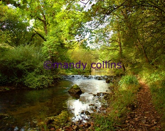 Millers Dale River Walk is a fine art print of this beauty spot in Derbyshire. Fine Art Photography by Mandy Collins