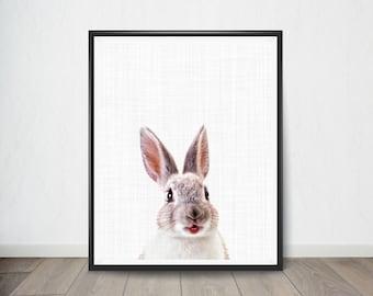 Rabbit Print, Animal Nursery Art, Baby Animal Portrait, Nursery Print, Woodlands Nursery Decor, Printable Digital Download, Baby Shower Gift
