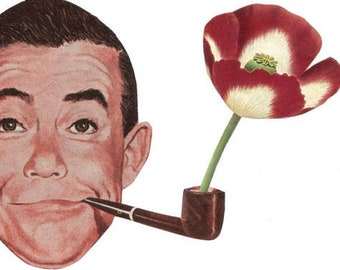 Original Art Collage, Red Poppy Art, Flower Pipe, Red Floral Artwork