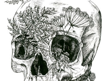 "Skull Fine Art Print 4x6"", Black & White, Original Ink Drawing, Figurative Art, Floral and Botanical Art, Contemporary Art"
