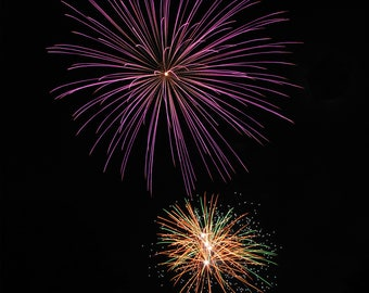 Fireworks Flowers Print #1 - Great Christmas gift for anyone!