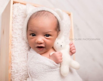 Teddy Bear Newborn Photography Set