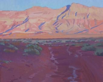 Arizona 22X24