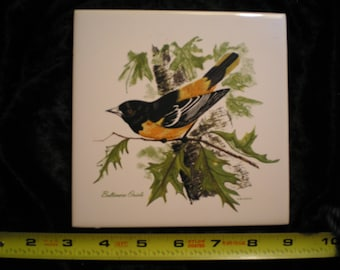 Vintage 70s Ceramic Decorative Screenprint Wildlife Baltimore Oriole Bird Tile Can be sold Individually