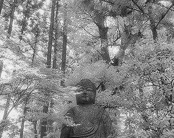 Buddha in the Trees, Nara, Japan