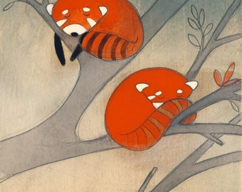 Sleepy Little Red Pandas - Signed Art Print