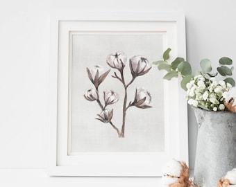 Cotton Bolls Watercolor Painting, Botanicals Print, Farmhouse Wall Art, Printable wall Art, Instant Download, Cotton Balls, Bathroom Decor