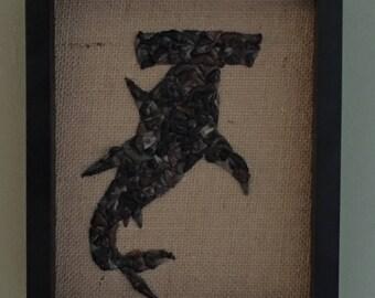 Great Hammerhead Shark - Shark Teeth Art in Small Shadowbox