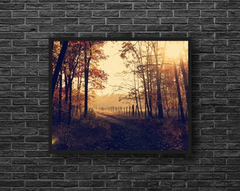 Autumn Road Photo - Fall Landscape Photo - Forest Road Print - Fall Photo - Autumn Nature Photography - Autumn Wall Art - Nature Wall Decor
