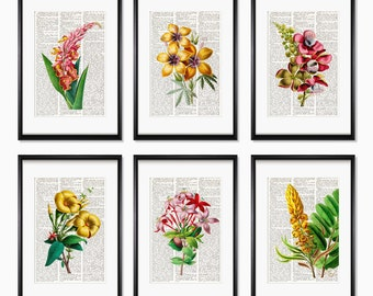 FLOWERS Dictionary page SET, flower gift girl, flower wall hanging, Botanical prints, flowers prints, flowers, Natural History, decor, #206