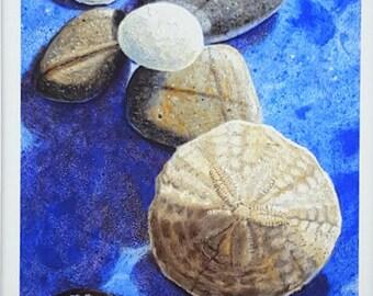 Sand Dollar Print, Pebble Artwork, Pebble Wall Art, Sand Dollar, Ocean Coastal Art, Beach Wall Art, Bathroom Beach Decor, Coastal Style