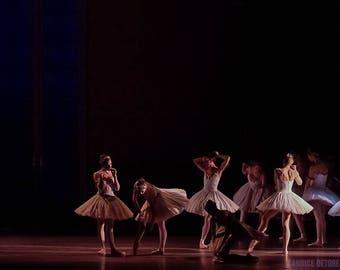 Dance Print - 'Swan Lake'