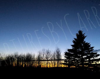 Treeline Overlooking City at Dusk, Shadow, Sunset, Crescent Moon, City Lights, Instant Download, Printable Wall Art, Digital Photography