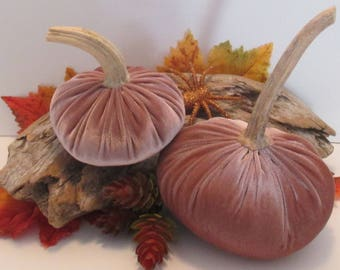 Antique Rose Pair of Velvet Pumpkins with Real dried stems