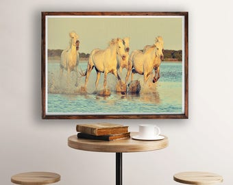 Horse Photography, Horse Decor, White Wild Horses Running in Water, Horses Print, Large Wall Art Print, Nature Photography, Fine Art Print