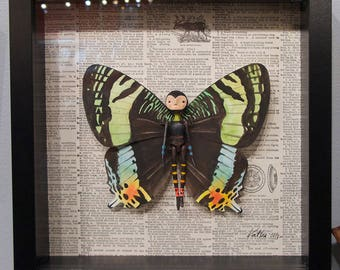 Custom Butterfly Person, 3D wall art, art doll, faux taxidermy, fantastical entomology