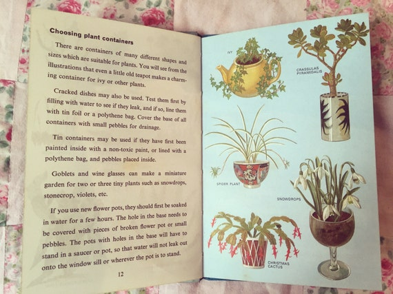 Indoor Gardening Books Vintage childrens ladybird book indoor gardening vintage childrens ladybird book indoor gardening vintage ladybird vintage book collection 1960s ladybird books early edition workwithnaturefo