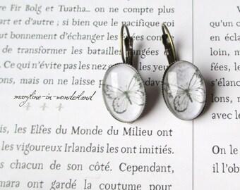 Bronze Butterfly Stud Earrings