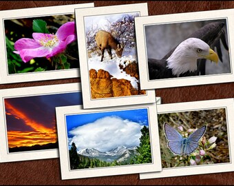 6 Nature Photo Note Cards Handmade Set - 5x7 Nature Note Card - Blank Note Card With Envelopes - Nature Blank Greeting Cards Handmade (GP85)