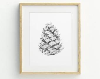 Rustic Wall Art, Hand Drawn, Nature Art, Pinecone Art Print, Original Artwork, Botanical Art, Wilderness Illustration, Pinecone Artwork