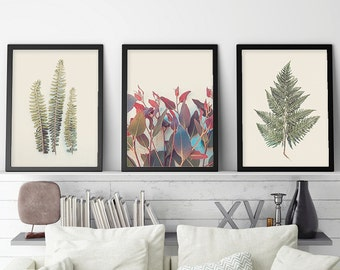 Downloadable Prints, Botanical Print Set, Botanical Set of 3, Set of 3 Botanical Prints, Print Set, Fern, Nature Photography, Australian Art