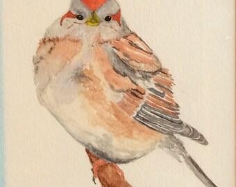 Original watercolor painting of American Tree Sparrow