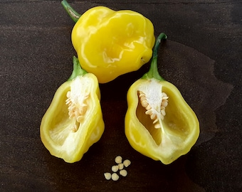 "Aji fantasy pepper ""SEEDS"": Open pollinated/non-gmo/organic/heirloom."