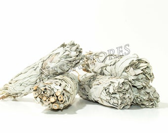 "California White Sage Smudge Incense 5""-6"" bundle (5 pcs)"