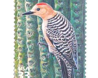 10 Unused Woodpecker Vintage Postage Stamps // Desert Gila Woodpecker on Saguaro Cactus // Desert Nature Postage Stamps for Mailing