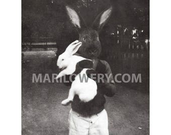 8 x 10 Inch Anthropomorphic Mixed Media Black Rabbit Collage Art Print of Boy Holding White Bunny