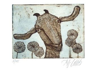 etching, goat art print, animal wall art, farm animal art, nature art, dandelion flower art, farm animal print, limited edition art
