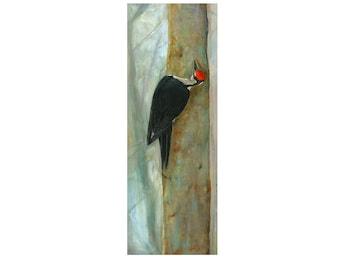 Pileated woodpecker giclee art print