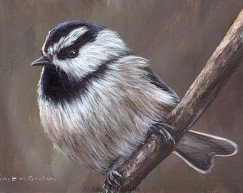 Bird Art Painting Mountain Chickadee SFA Wildlife Original hand painted bird acrylic painting by Australian Artist Janet M Graham