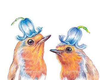 English Robin Wearing a Bluebell Hat - Bird and Flower Fine Art Print, Crayon Drawing, Funny Backyard Nature Art