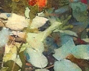 Garden Rose Buds: A Frameable, Instant Download Wall Art Print