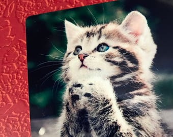 New Magnet PRAYING KITTY Kitten Aluminum cat christian pray 3 INCHES