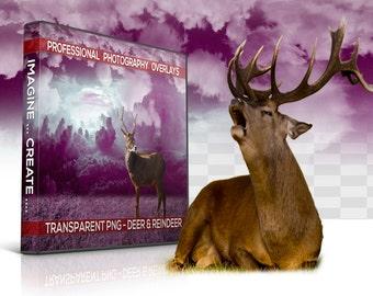 40 REINDEER Overlays And Deer Overlays Transparent PNG Photoshop Animal Overlay, Digital Background, Digital Backdrop, Photoshop Overlay